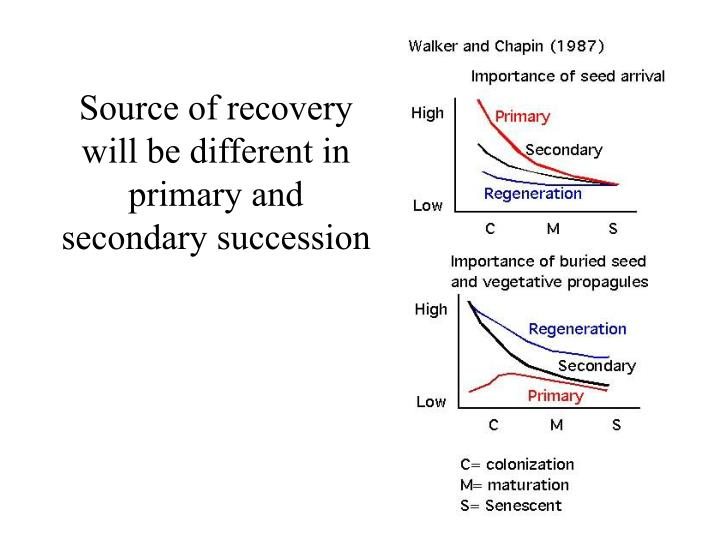 Source of recovery will be different in primary and secondary succession