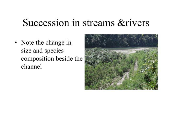 Succession in streams &rivers