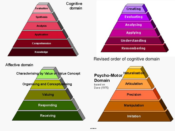 Revised order of cognitive domain