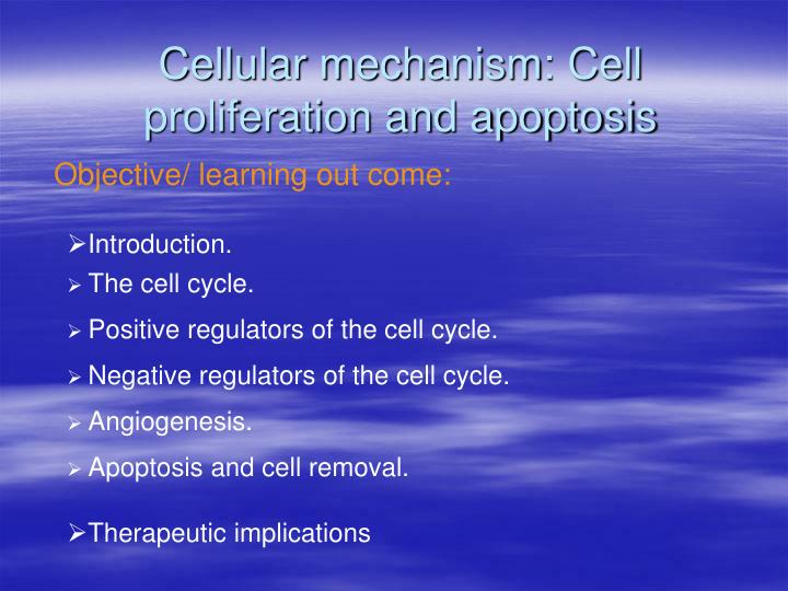 cellular mechanism cell proliferation and apoptosis n.