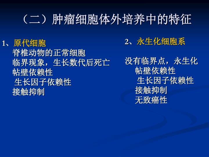 (二)肿瘤细胞体外培养中的特征
