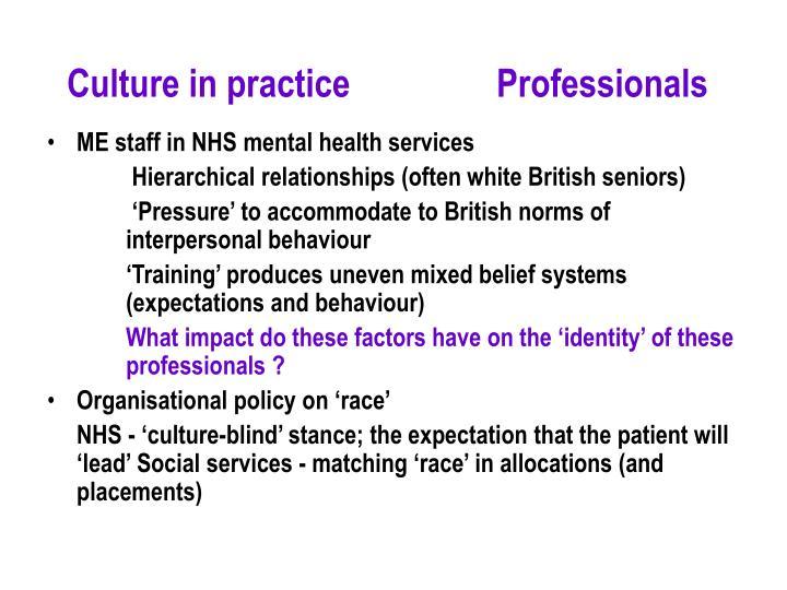 Culture in practice        Professionals