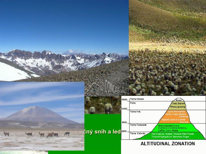 Výškové stupně v Andách