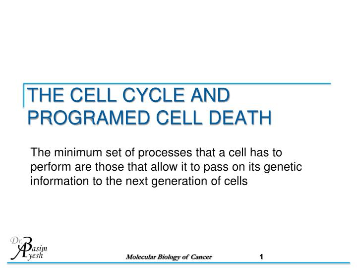 the cell cycle and programed cell death n.