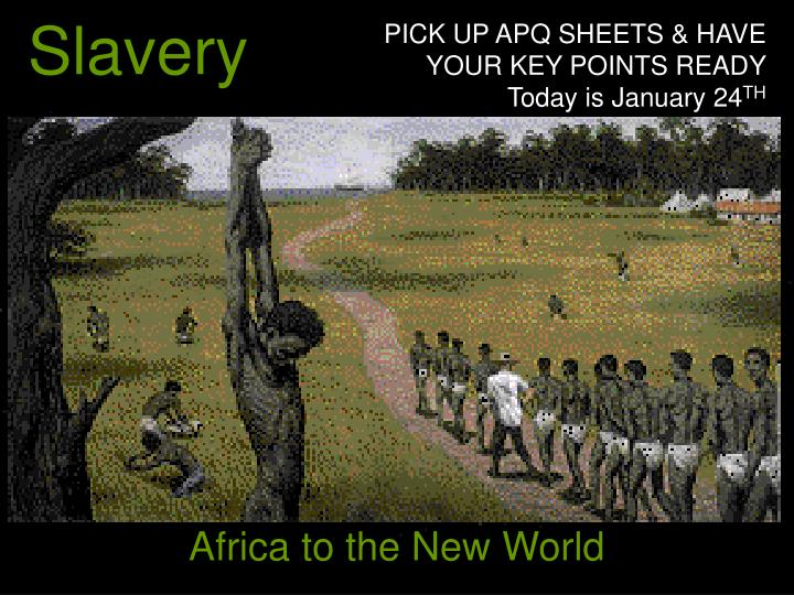 slavery in the new world Holing cane was a process by which slave labor gangs planted sugar cane on plantations.