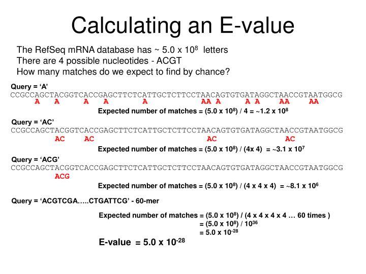 Calculating an E-value