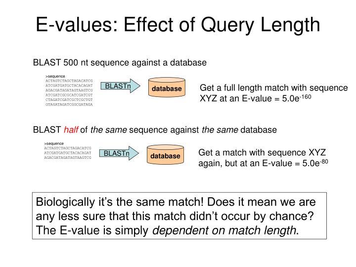 E-values: Effect of Query Length