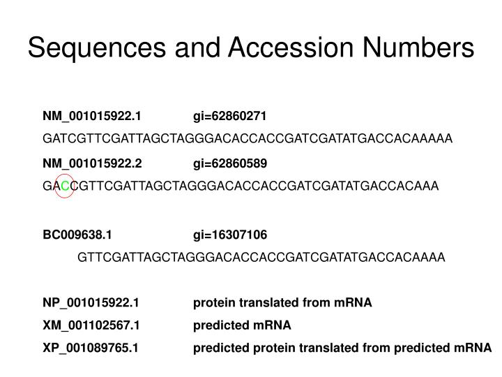 Sequences and Accession Numbers
