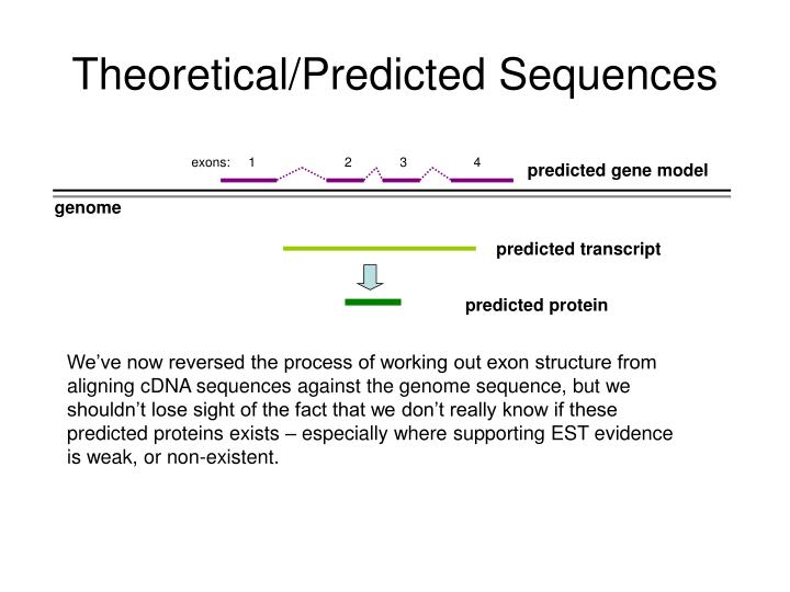 Theoretical/Predicted Sequences