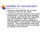 suitability for domestication