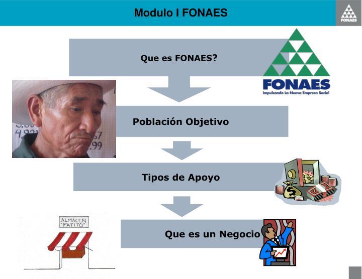 Modulo I FONAES