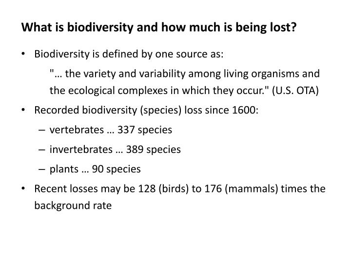 What is biodiversity and how much is being lost