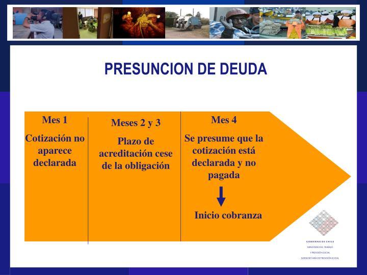 PRESUNCION DE DEUDA