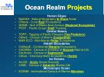 ocean realm projects