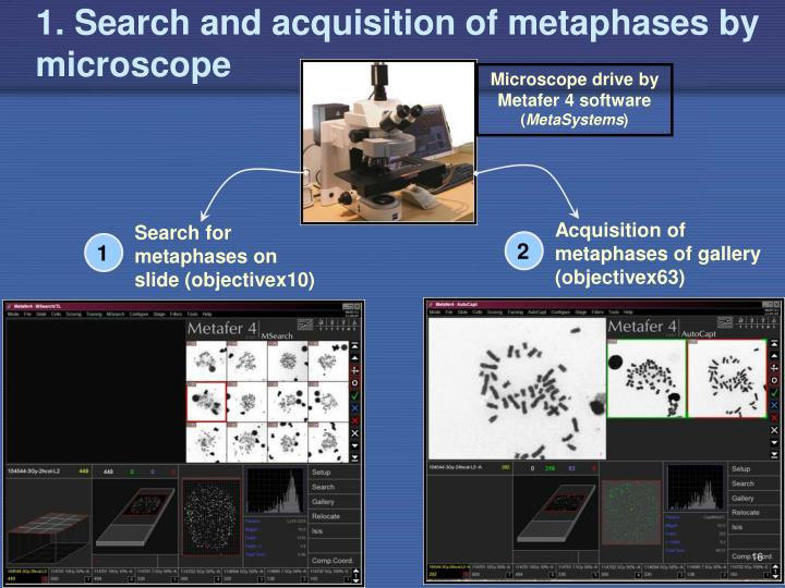 1. Search and acquisition of metaphases by microscope