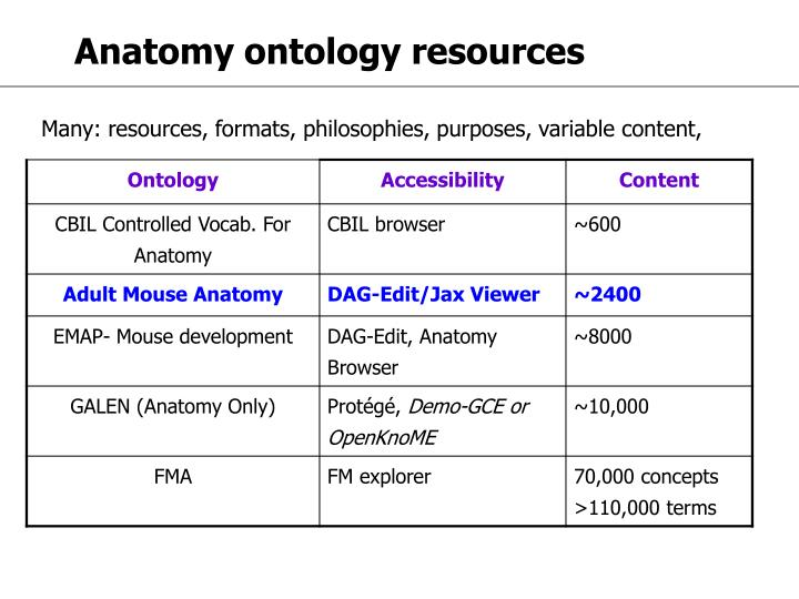 Anatomy ontology resources