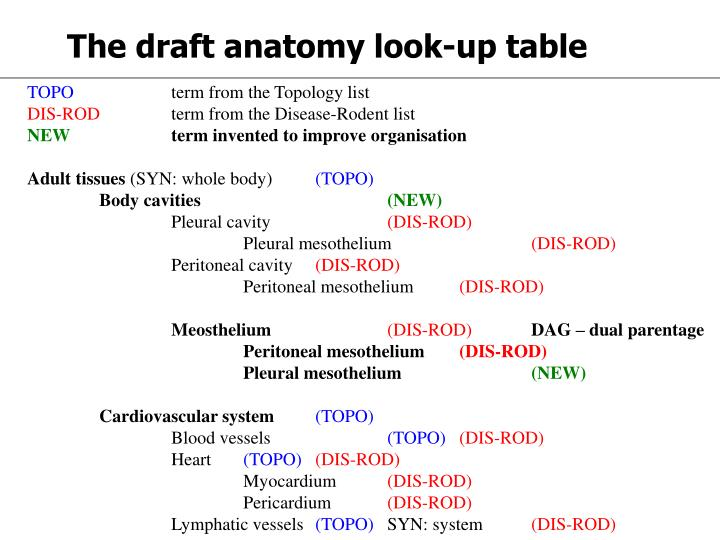 The draft anatomy look-up table