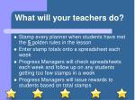 what will your teachers do