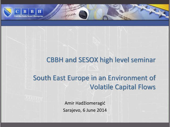 Cbbh and sesox high level seminar south east europe in an environment of volatile capital flows