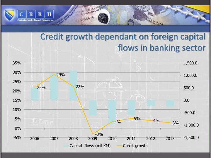 Credit growth dependant on foreign capital flows in banking sector