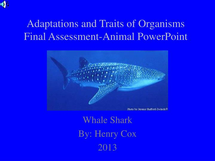 adaptations and traits of organisms final assessment animal powerpoint n.