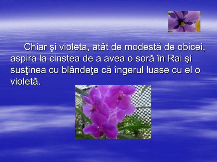 Chiar şi violeta, atât de modestă de obicei, aspira la cinstea de a avea o soră în Rai şi susţinea cu blândeţe că îngerul luase cu el o violetă.