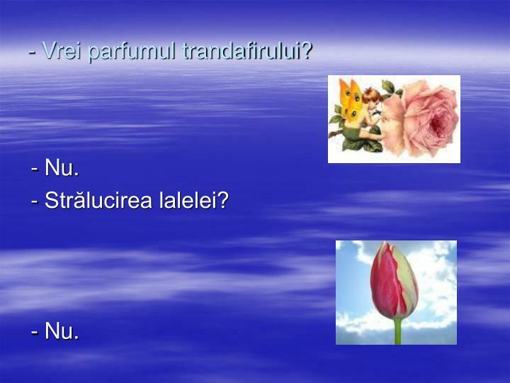 - Vrei parfumul trandafirului?