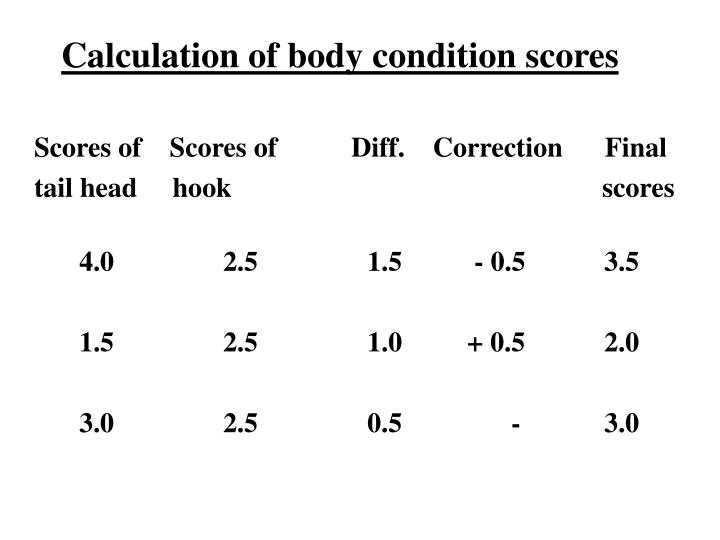 Calculation of body condition scores