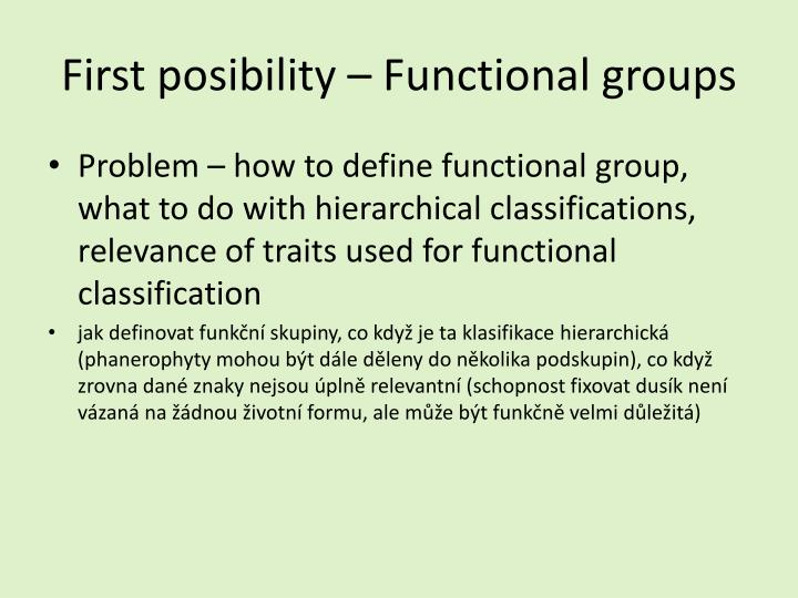 First posibility – Functional groups