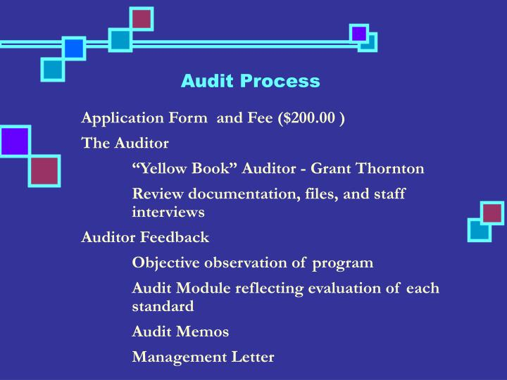 Audit Process