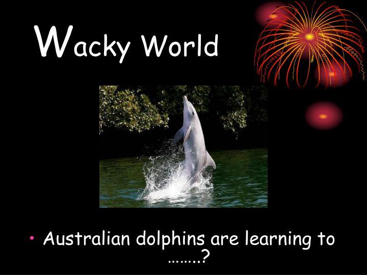W acky world