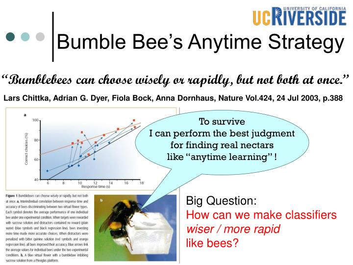 Bumble Bee's Anytime Strategy