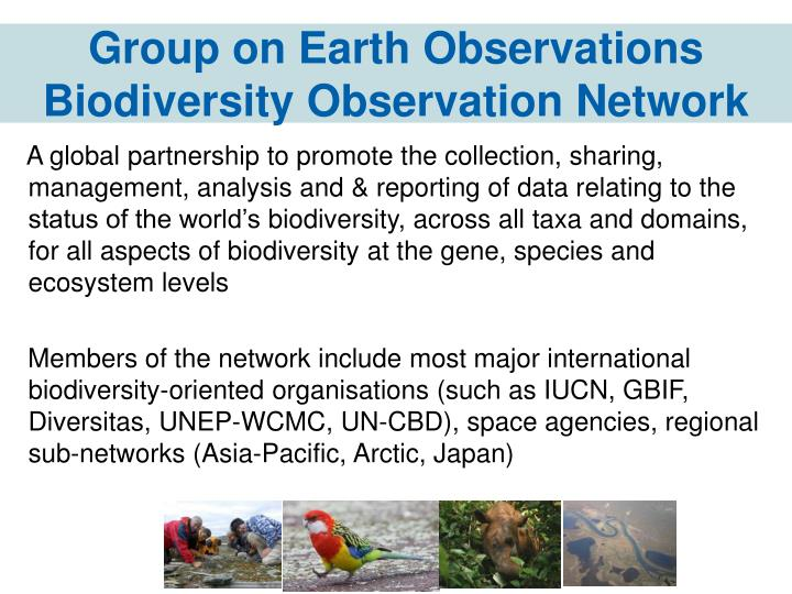 Group on earth observations biodiversity observation network