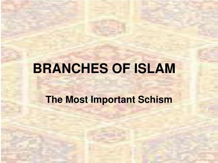 branches of islam n.