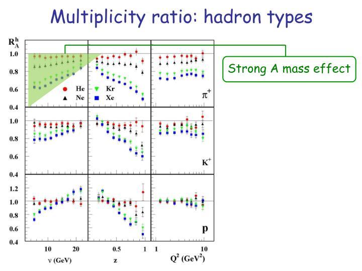Multiplicity ratio: hadron types