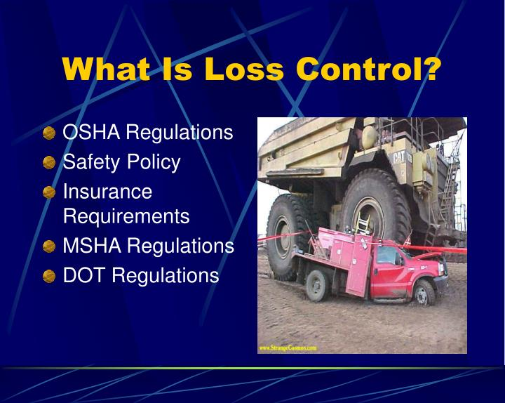 What is loss control