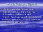 what is database system
