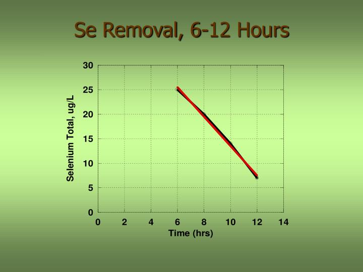 Se Removal, 6-12 Hours