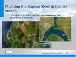 flushing the kapuas kecil in the dry season