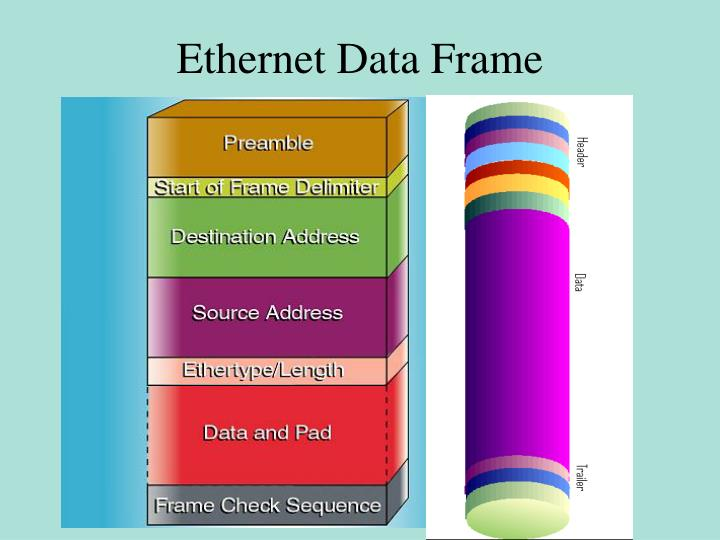 Ethernet Data Frame