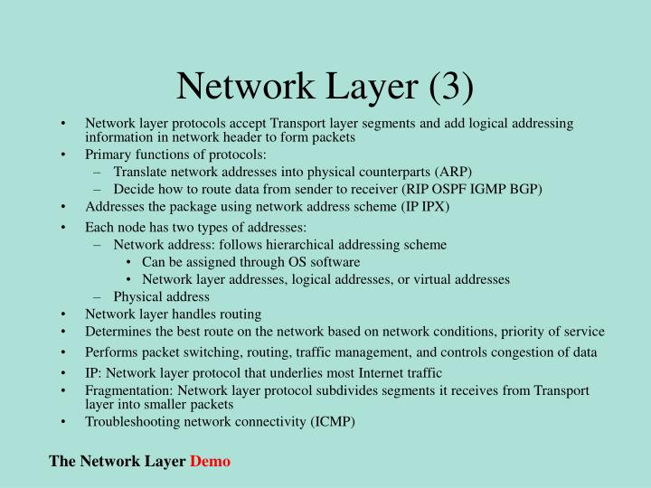 Network Layer (3)