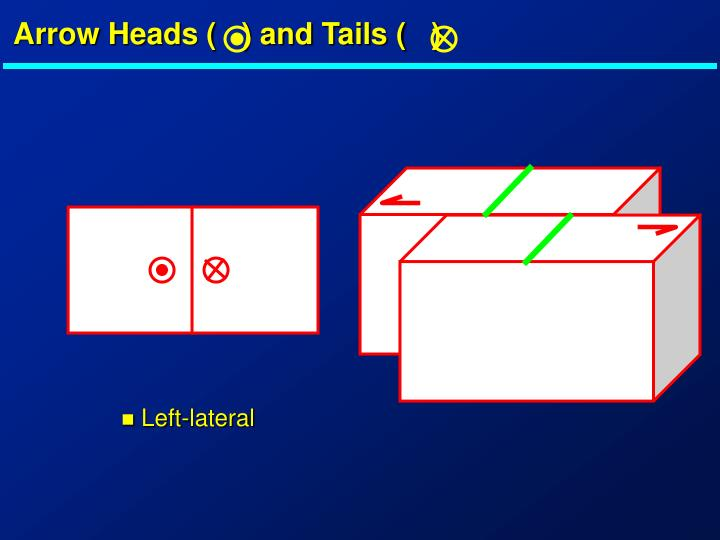 Arrow Heads (   ) and Tails (   )