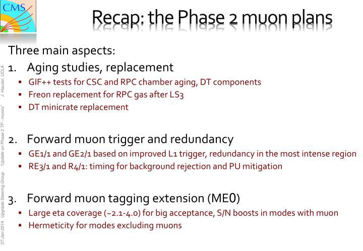 Recap: the Phase 2 muon plans