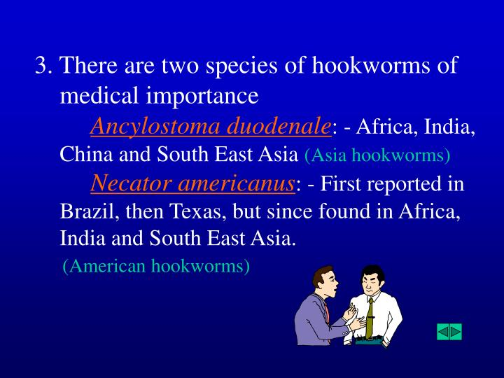 3. There are two species of hookworms of medical importance
