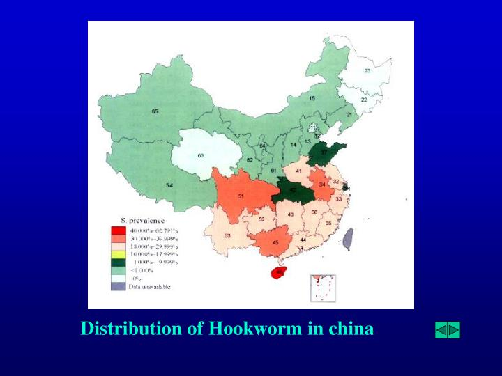 Distribution of Hookworm in china