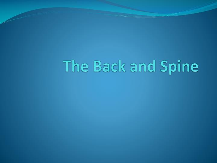 the back and spine n.