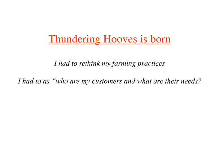 Thundering Hooves is born