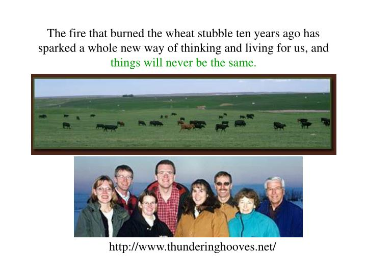 The fire that burned the wheat stubble ten years ago has sparked a whole new way of thinking and living for us, and