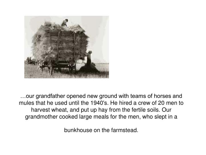 …our grandfather opened new ground with teams of horses and mules that he used until the 1940's. H...
