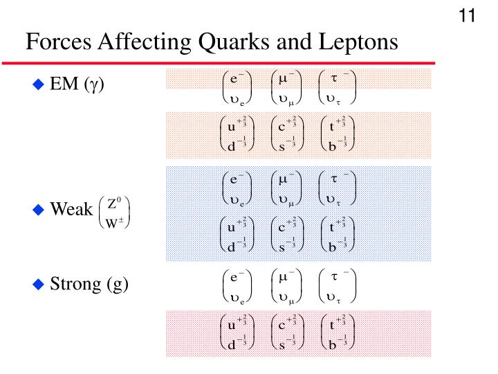Forces Affecting Quarks and Leptons